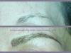 microblade-brows3