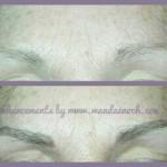 microblade brows1