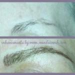 microblade brows3