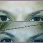 microblade brows9